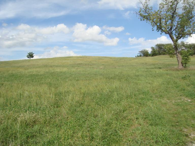 Rural residential 7 acre building lot!